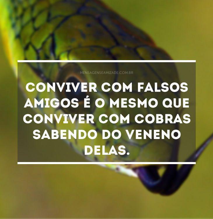 <p>Conviver com falsos amigos é o mesmo que conviver com cobras sabendo do veneno delas.</p>
