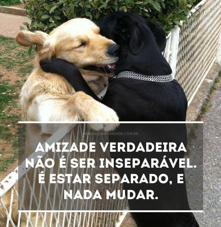 Frases De Amizade Verdadeira