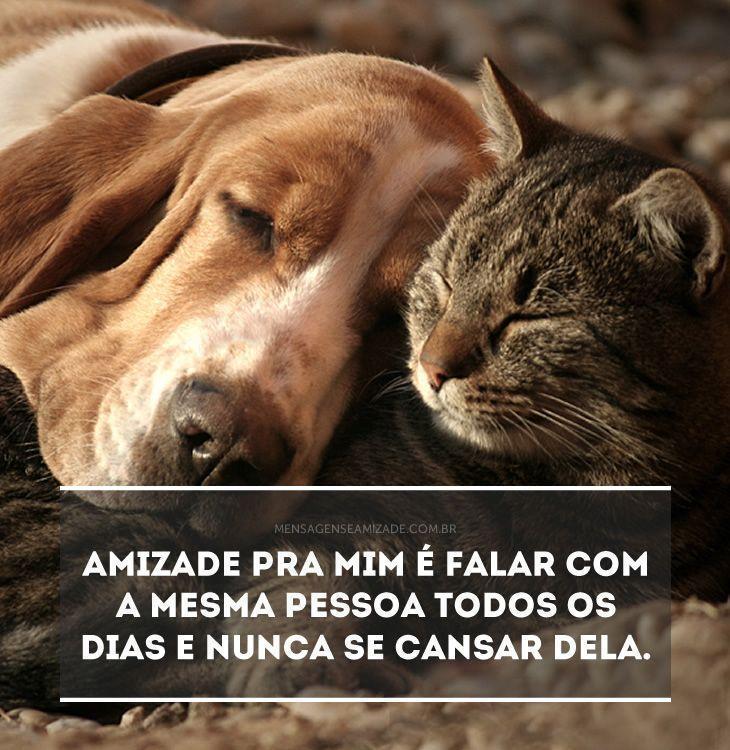 Imagem de Amizade