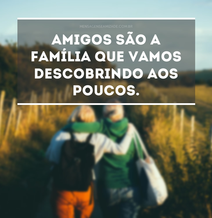 <p>Amigos são a família que vamos descobrindo aos poucos.</p>