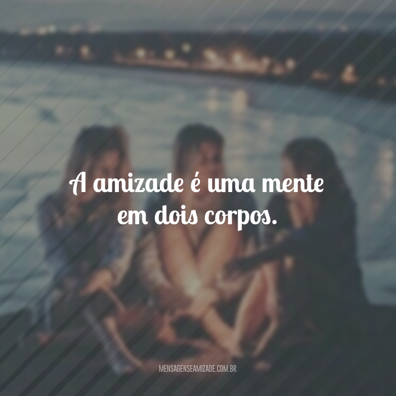 A amizade é uma mente em dois corpos.