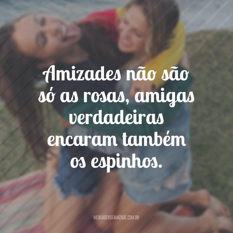 Amizades não são só as rosas, amigas verdadeiras encaram também os espinhos.