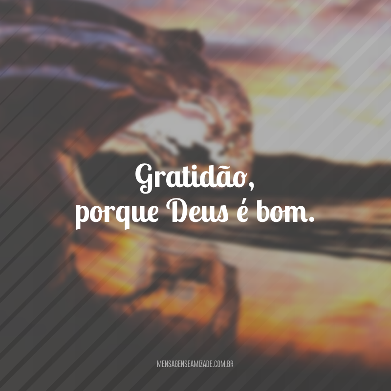Gratidão, porque Deus é bom.