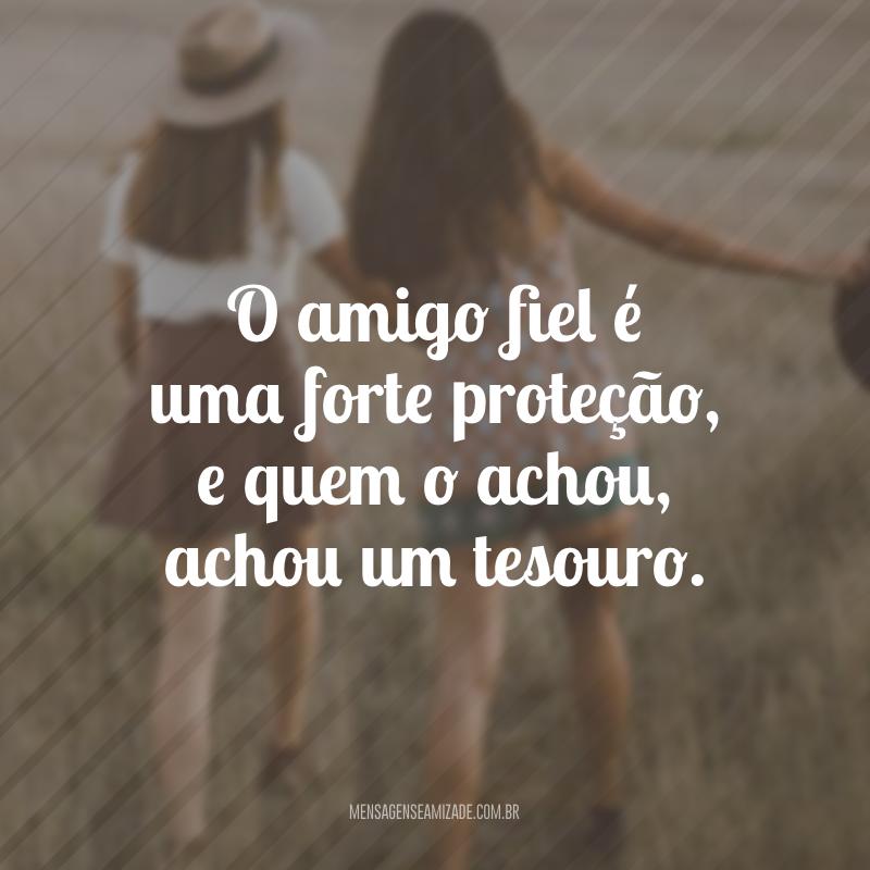 O amigo fiel é uma forte proteção, e quem o achou, achou um tesouro.