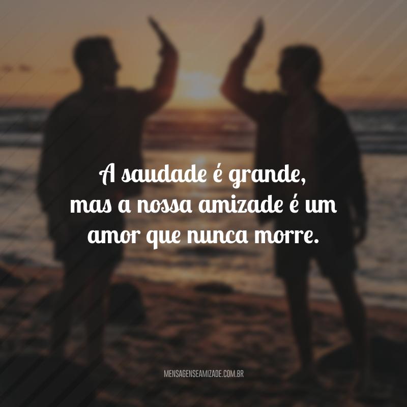 A saudade é grande, mas a nossa amizade é um amor que nunca morre.