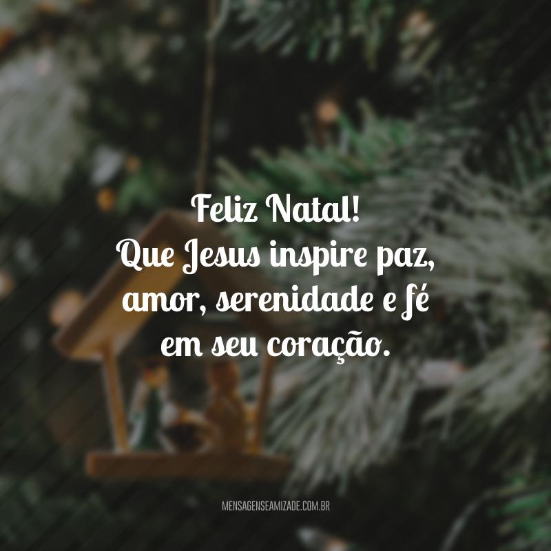 Feliz Natal! Que Jesus inspire paz, amor, serenidade e fé em seu coração.